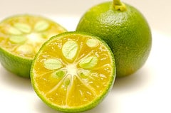 citrus fruit juicer post image